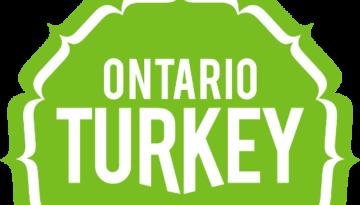 TURK_Logo_notag_RGB_final_pixels